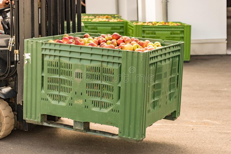 Forklift carries crates of fruit. Many apples in container. Forklift carries crates of fruit. Apples in container stock photos
