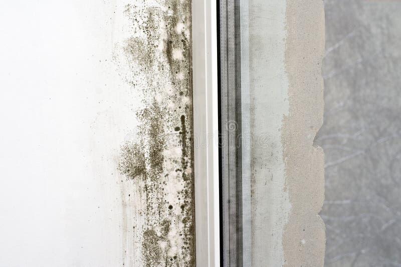 Form auf der Wand lizenzfreie stockbilder