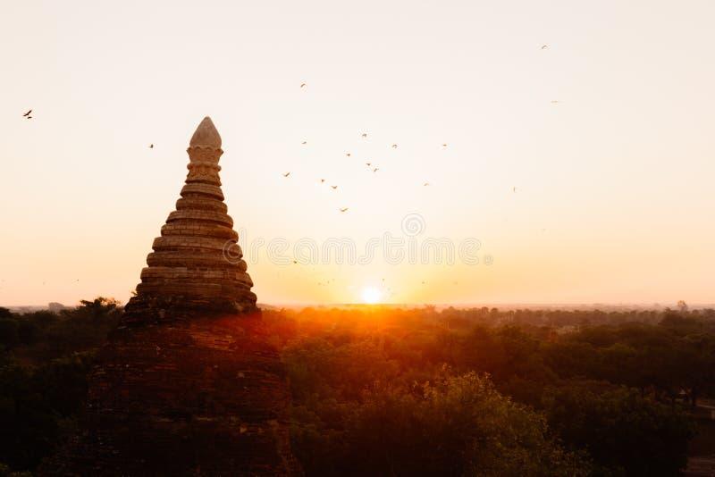 Form för buddistisk tempel mot solljus under soluppgång arkivfoto