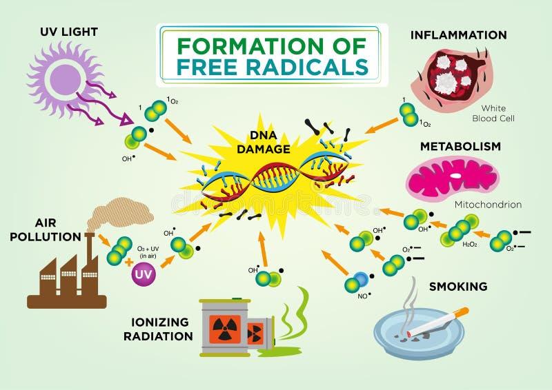 Formação de conceito de radicais livres Clipart editável e jpg ilustração royalty free