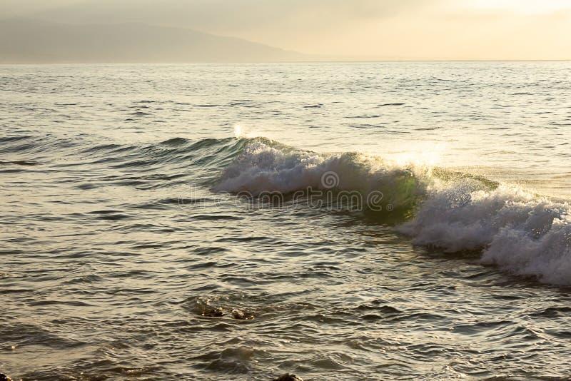 Formação de espuma quebrando o tubo de uma onda com backspray em uma extensão textured do oceano imagem de stock