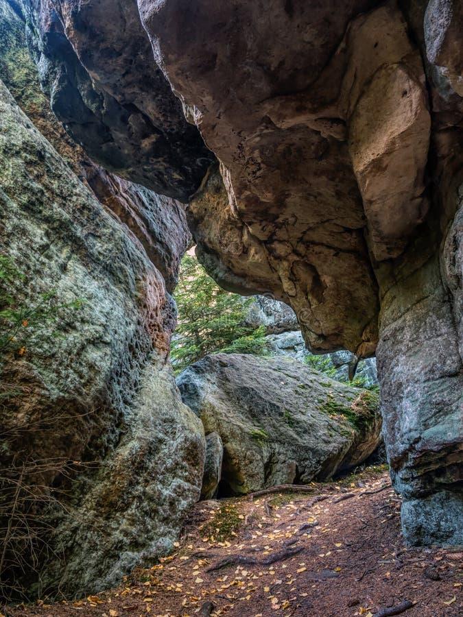 Formação de rochas de Sandstone e árvore de papoila no Parque Nacional de Table Mountain, Polônia imagens de stock