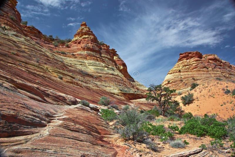 Formação do Sandstone nos Buttes do chacal sul fotos de stock royalty free
