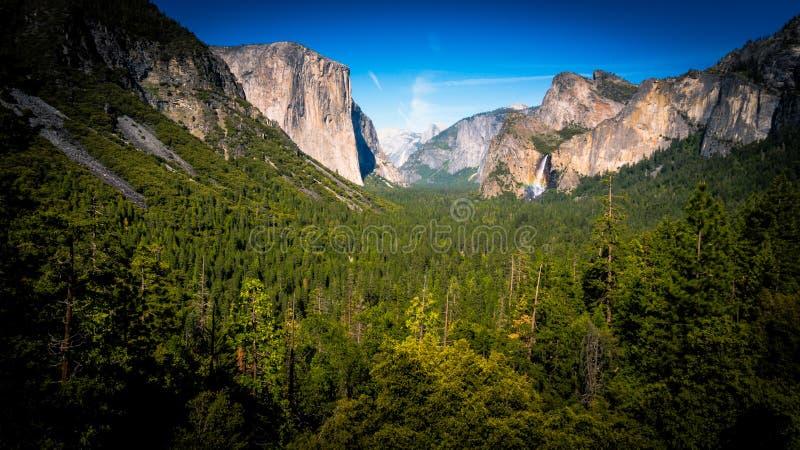 Formação Verde De Forest Trees Between Beige Rock Sob O Céu Claro Durante A Luz Do Dia Domínio Público Cc0 Imagem