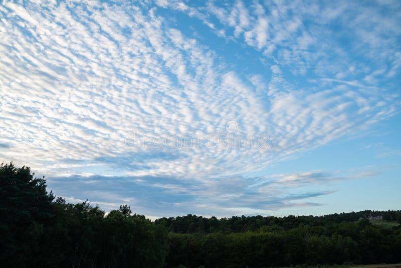 Formações bonitas da nuvem de altocumulus do cirrocumulus do céu de cavala fotografia de stock