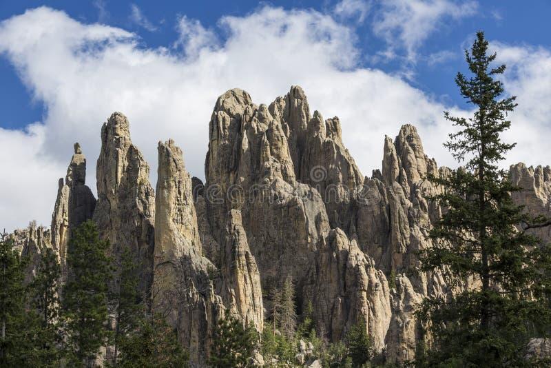 Formações de rocha de Black Hills fotografia de stock royalty free