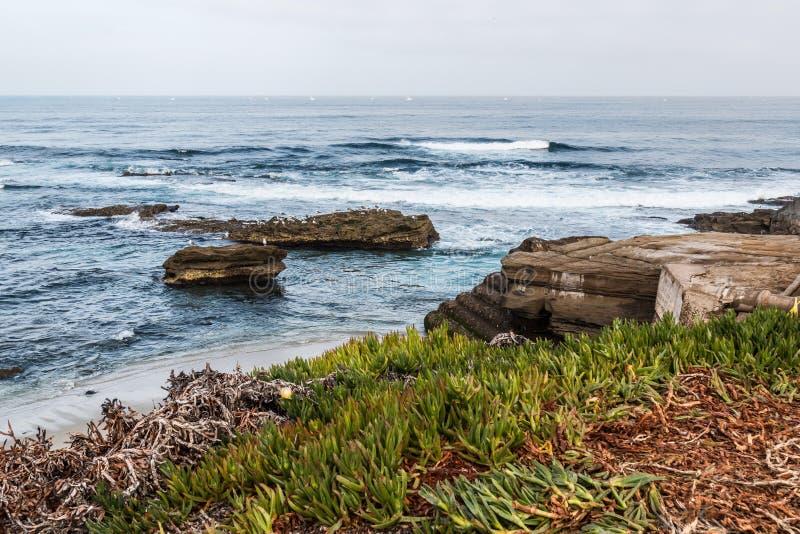 Formações de rocha e Iceplant em La Jolla, Califórnia imagem de stock royalty free