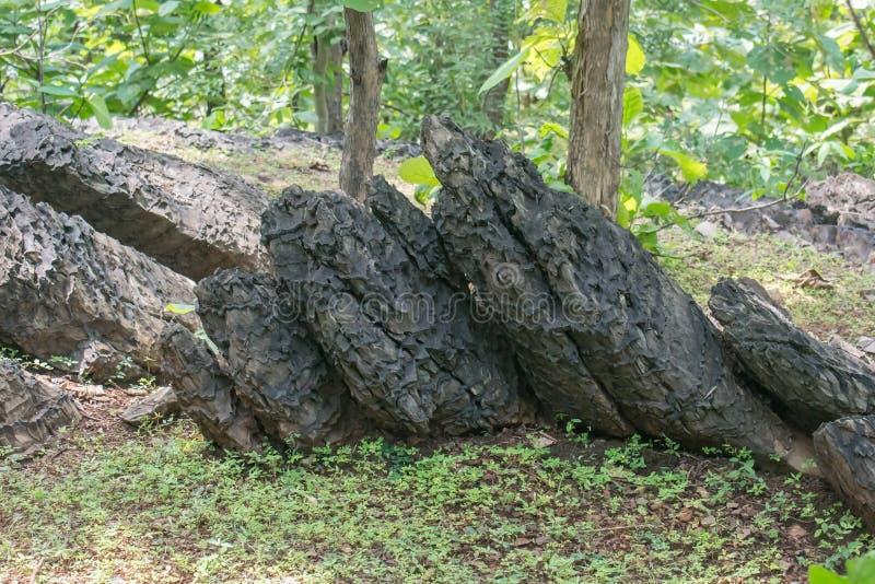 Formações de rocha na Índia fotos de stock