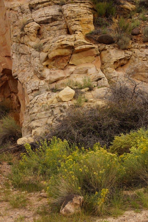 Formações de rocha sedimentar do detalhe imagens de stock royalty free