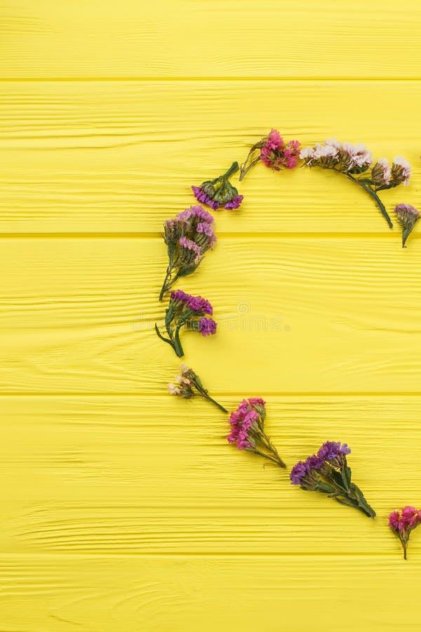 Forma bonita da flor do statice do limonium imagens de stock royalty free
