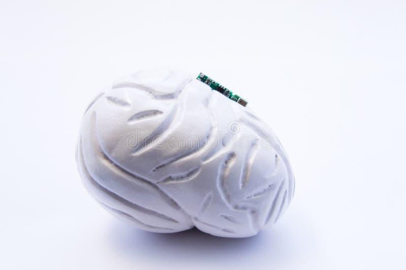 forma 3D anatômica do cérebro humano com o microchip digital eletrônico Conceito de usar o microchip cerebral do implante para o  ilustração royalty free
