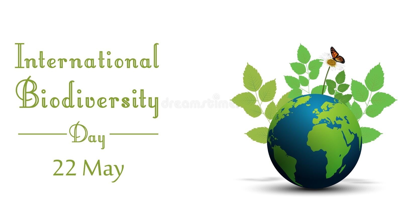 Forma de la cinta con las hojas y las mariposas en la tierra para el día internacional de la biodiversidad libre illustration