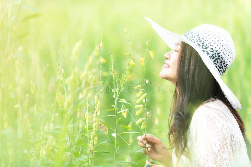 Forma de vida asiática feliz de la mujer en la salida del sol de la flor del amarillo del prado Al aire libre activos se relajan  imagen de archivo