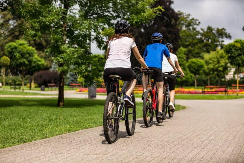 Forma de vida sana - bicicletas que montan de la gente en parque de la ciudad imagen de archivo