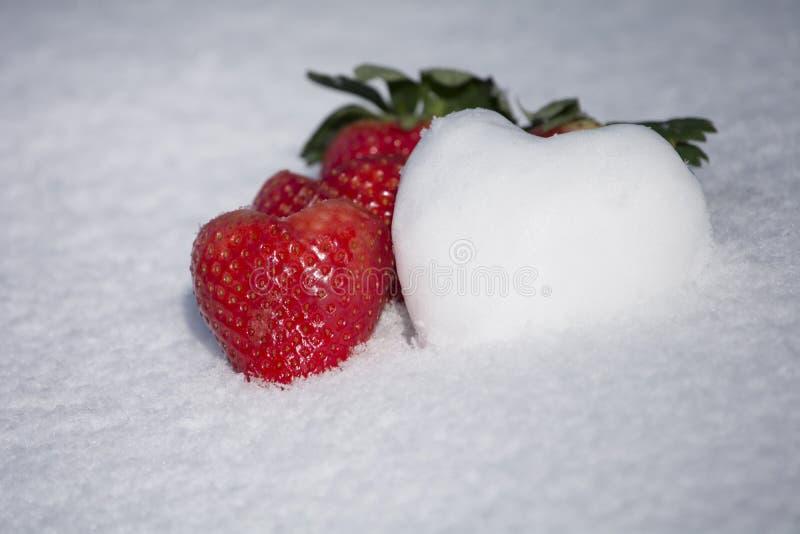 Forma dei cuori della neve e delle fragole sul fondo bianco della neve immagini stock