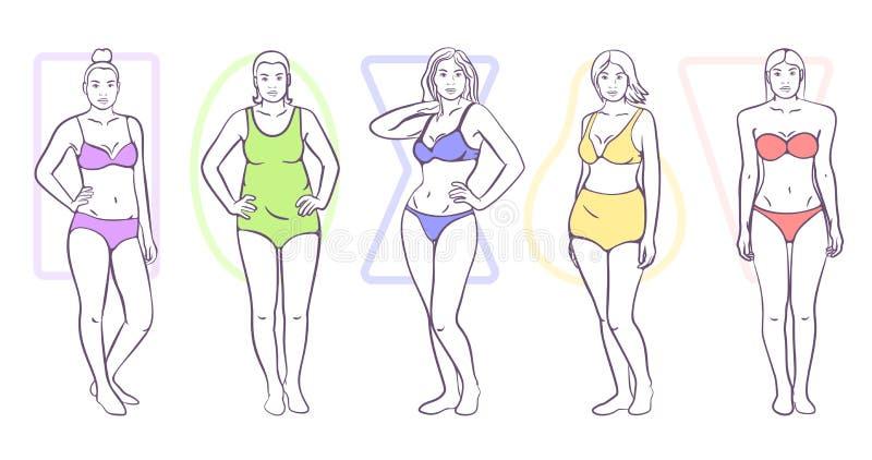 Forma del corpo della donna illustrazione vettoriale