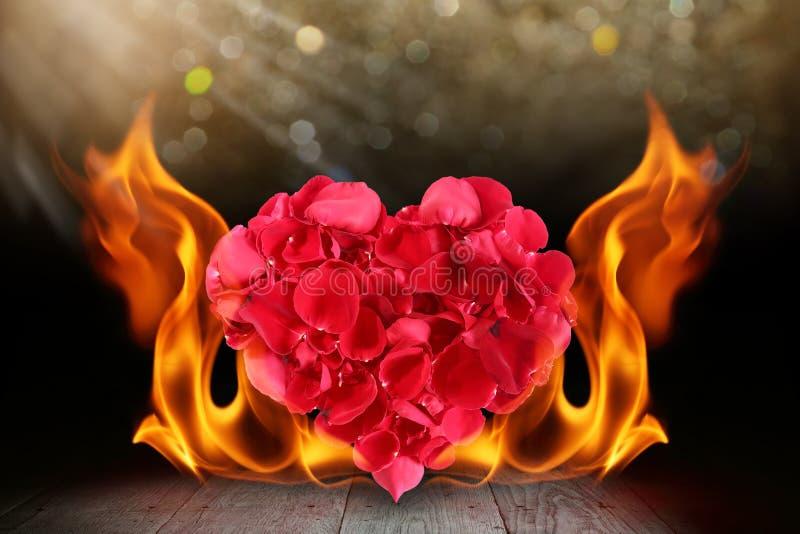 Forma del cuore dei petali di Rosa con la fiamma del fuoco della fiammata sulla piattaforma di legno illustrazione vettoriale