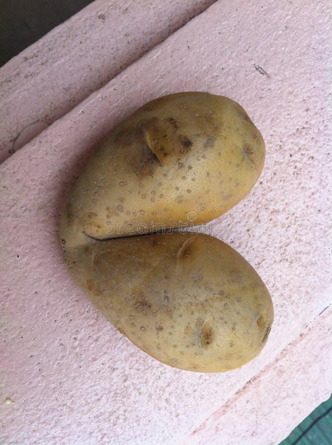 Forma del cuore della patata per il biglietto di S. Valentino fotografie stock libere da diritti