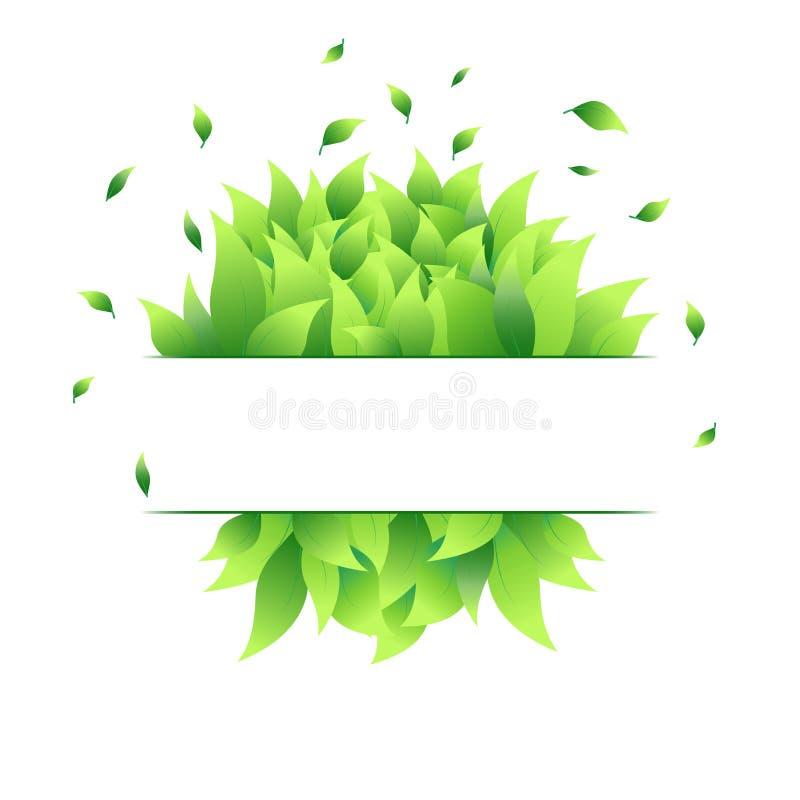 Forma Del Texto Con Las Hojas Verdes Cuadro De Texto Marco Floral En ...