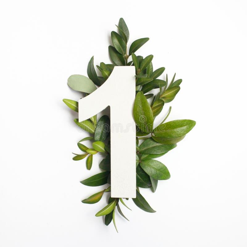 Forma di numero uno con le foglie verdi Concetto della natura Disposizione piana Vista superiore fotografia stock libera da diritti