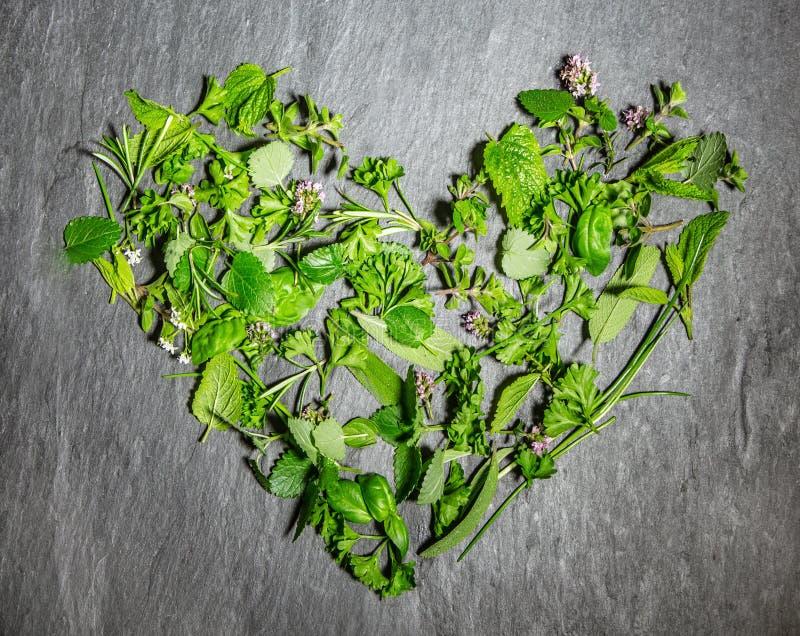 Forma do coração de ervas culinárias verdes frescas misturadas fotos de stock