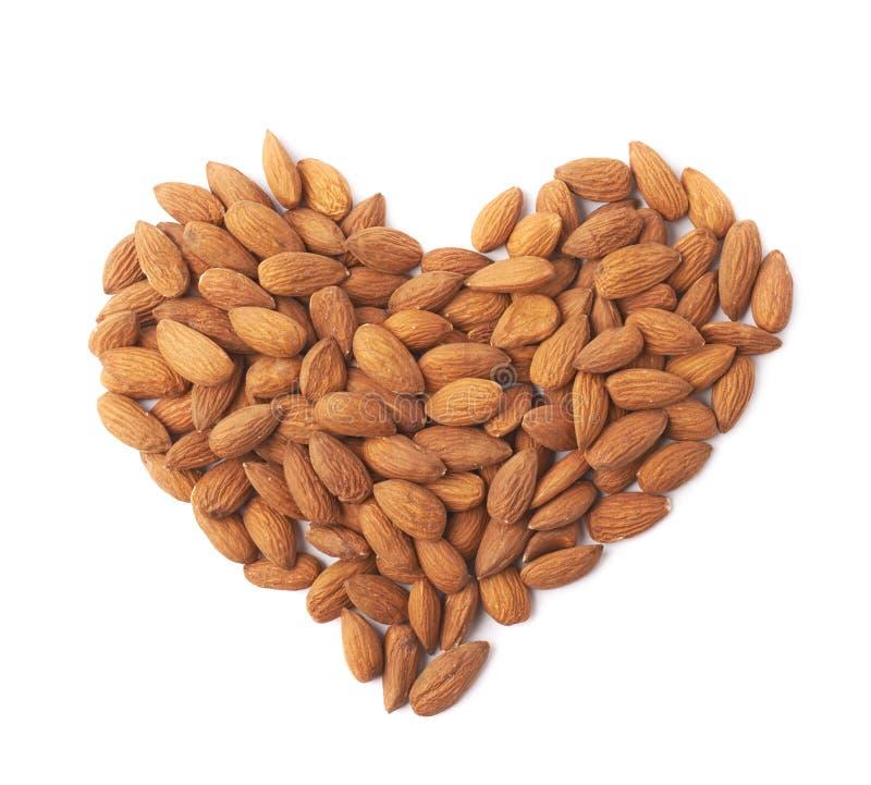 Forma do coração feita de sementes da amêndoa foto de stock