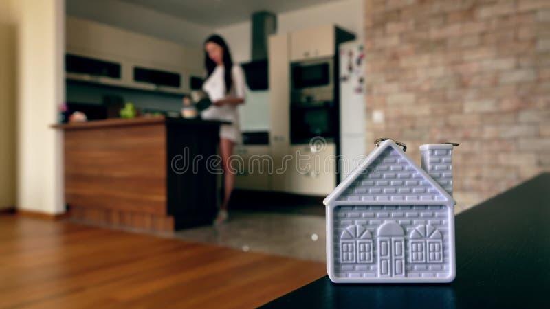 Forma domestica contro la giovane donna esile che cucina nella cucina moderna fotografia stock libera da diritti