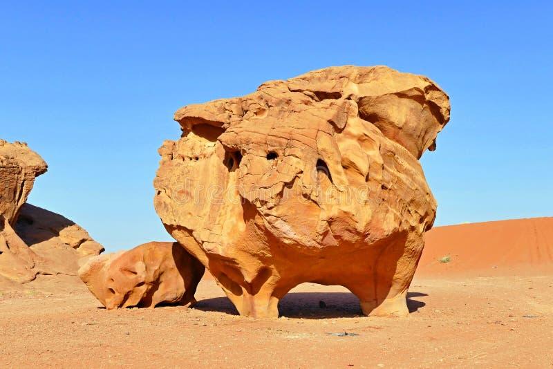 Forma peculiare della roccia a Wadi Rum Desert, Giordania immagini stock libere da diritti