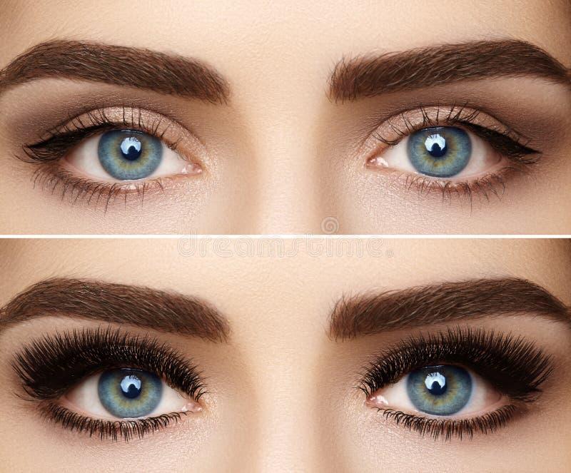 Forma perfecta de cejas y de pestañas extremadamente largas El tiro macro de la moda observa rostro Antes y después fotos de archivo