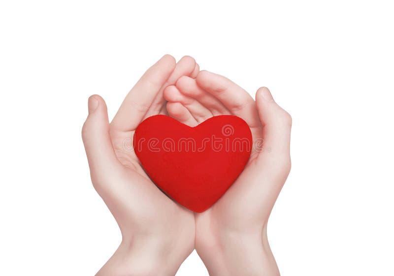 Forma vermelha do coração nas mãos O dia, a caridade e o amor de Valentim fotografia de stock