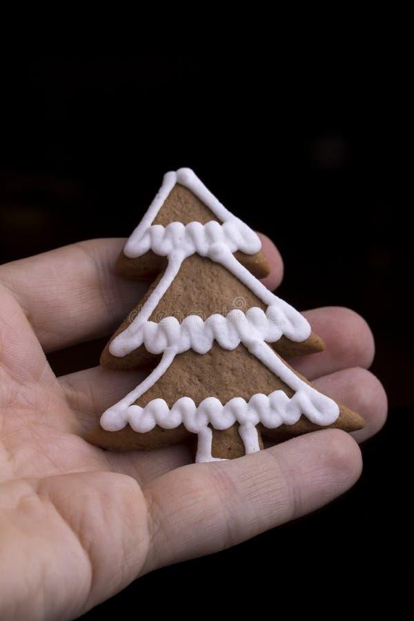 Formación de hielo adornada árbol de navidad del pan de jengibre imagen de archivo