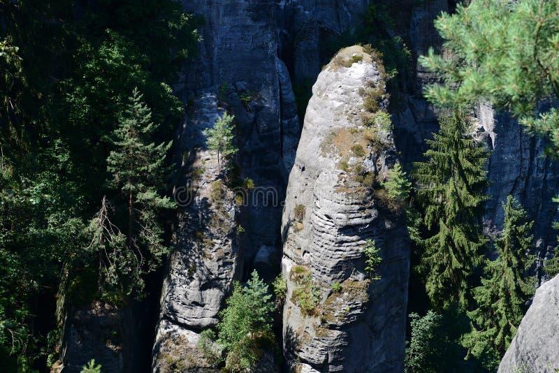 Formación de roca de Bastai Suiza sajona en tiempo de verano, Alemania fotografía de archivo
