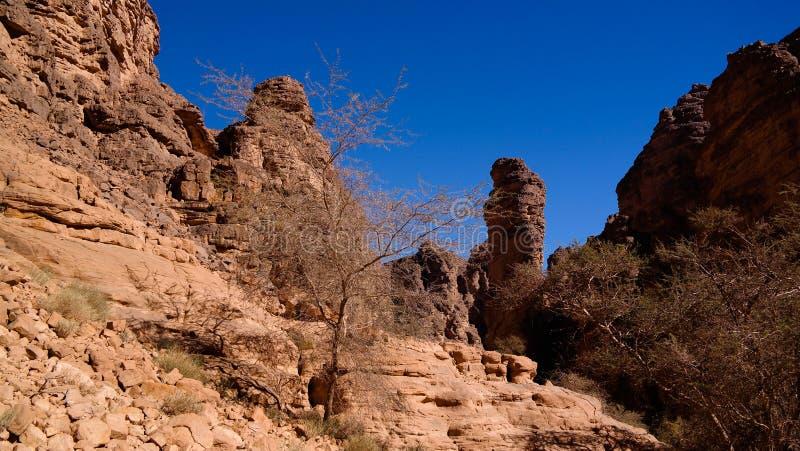 Formación de roca de Bizzare en Essendilene, parque nacional del nAjjer de Tassili, Argelia imagen de archivo libre de regalías