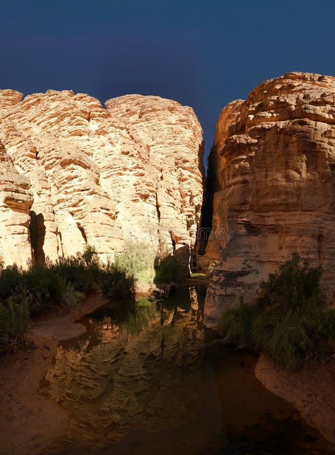 Formación de roca de Bizzare en Essendilene, parque nacional del nAjjer de Tassili, Argelia fotografía de archivo libre de regalías