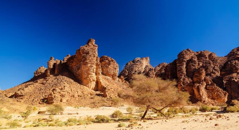 Formación de roca de Bizzare en Essendilene, parque nacional del nAjjer de Tassili, Argelia imágenes de archivo libres de regalías