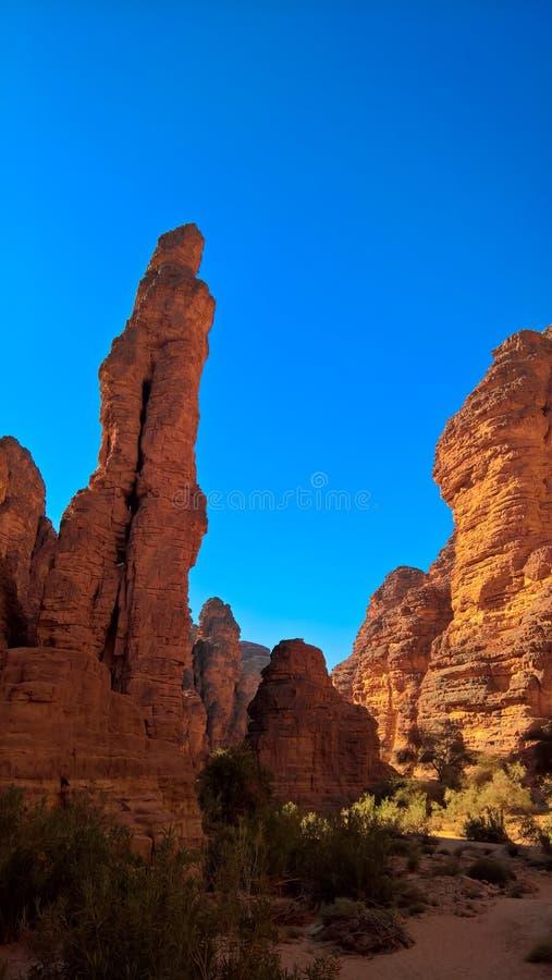 Formación de roca de Bizzare en Essendilene, Tasili, Argelia imágenes de archivo libres de regalías