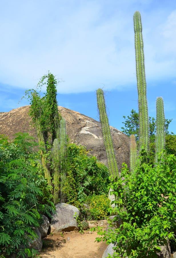 Formación de roca de Casibari fotografía de archivo