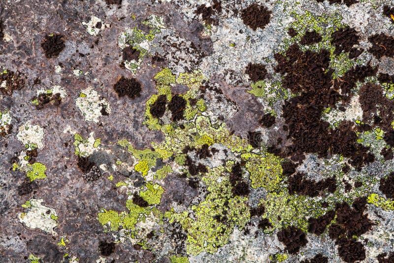 Formación de roca del primer fotos de archivo