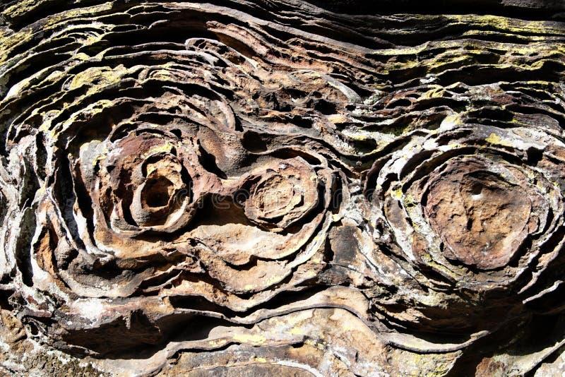 Formación de roca inusual en el jardín de dioses, bosque del Estado cherokee, IL imagen de archivo libre de regalías