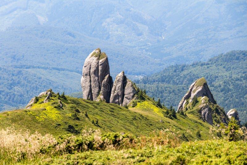 Formación de roca puntiaguda en las montañas cárpatas de Ciucas, Rumania, durante un alza casual en un día de verano caliente fotos de archivo