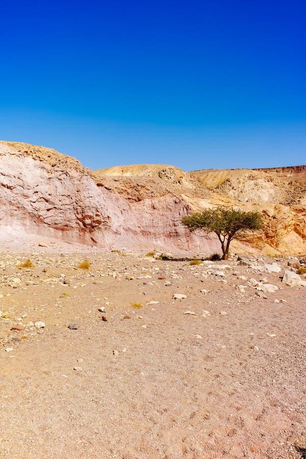 Formación geológica hermosa en el desierto, poder colorida de la piedra arenisca imagen de archivo libre de regalías