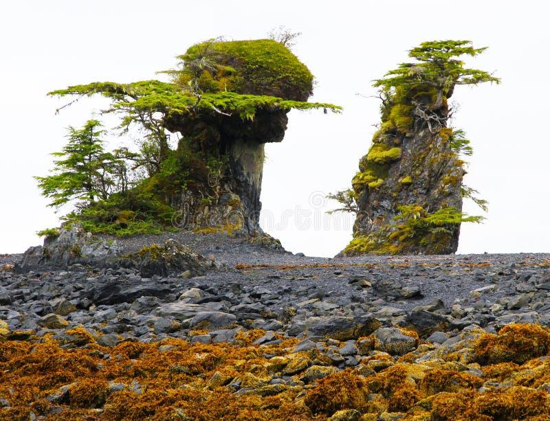 formaci dziwny pływowy zdjęcie royalty free