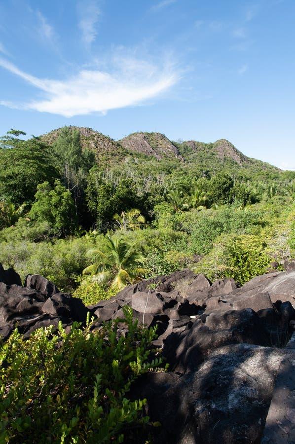 Formaci?n de piedra de la lava en el arbusto en el parque natural de isla del curieuse, Seychelles foto de archivo