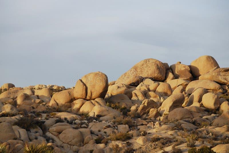 Formaciones de roca en parque nacional del ?rbol de Joshua imagenes de archivo