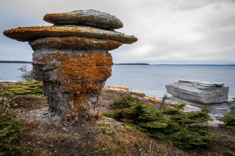 Formade den dolda champinjonen för den färgrika laven monolithe arkivbilder