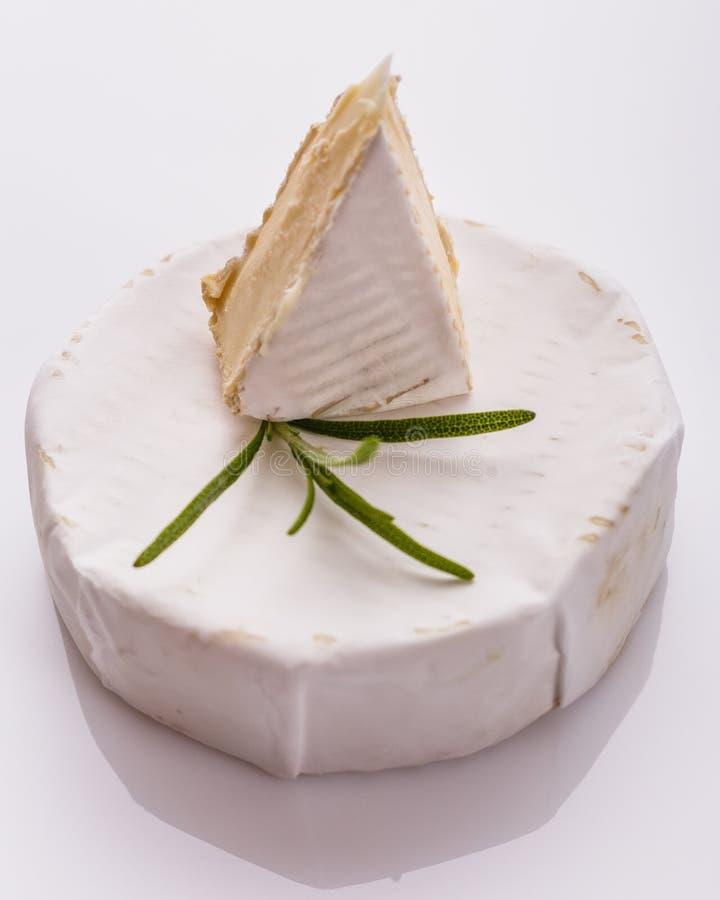 Formaggio cremoso delizioso del camembert su un fondo bianco fotografia stock