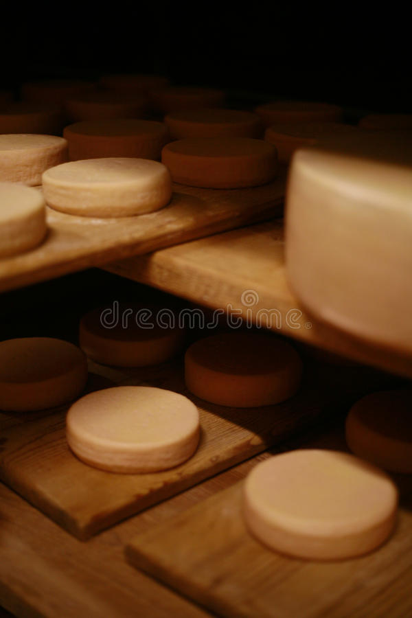 Formaggio del latte immagini stock