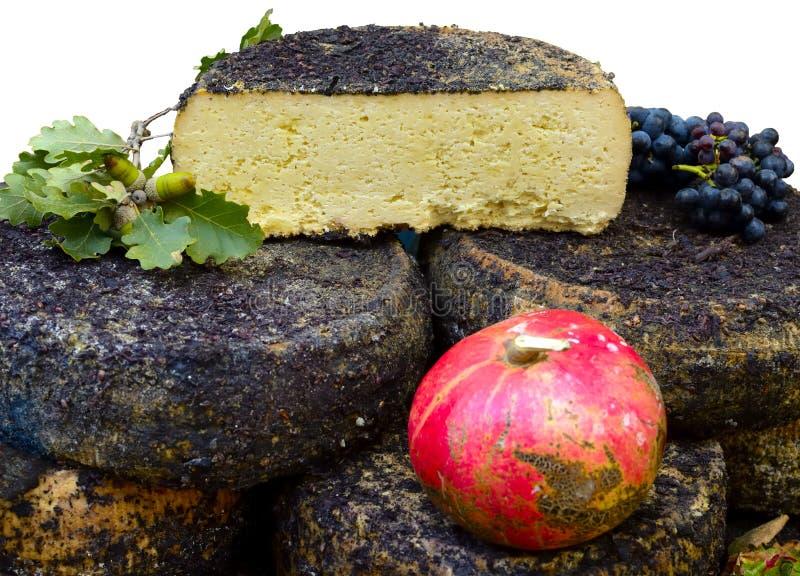 formaggio di pecorino fatto dalla pecora immagine stock
