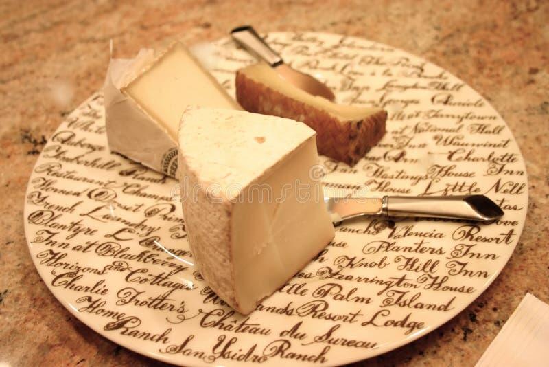 Download Formaggio gastronomico immagine stock. Immagine di brie - 3885121