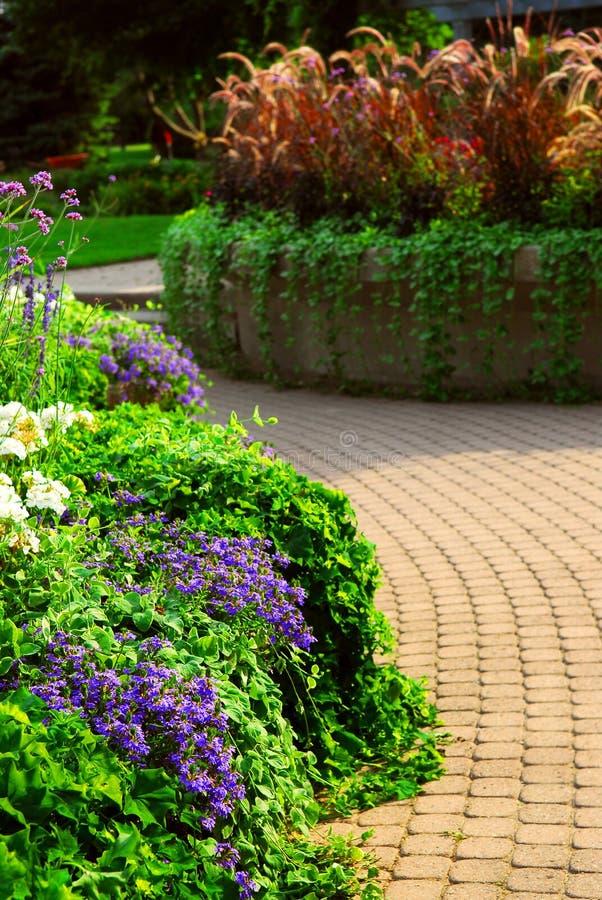 Download Formal garden stock image. Image of flowerbeds, lush, blooming - 3012597